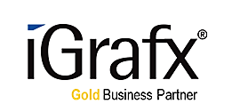 iGrafx INS